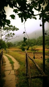 path to machan
