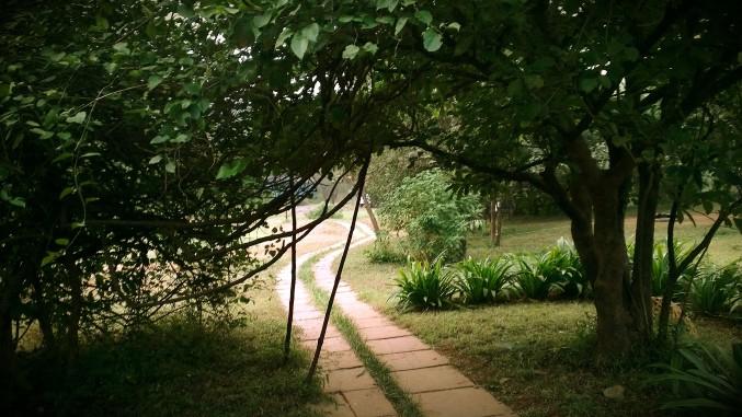 path to machan