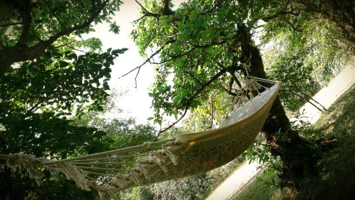 comfy hammock