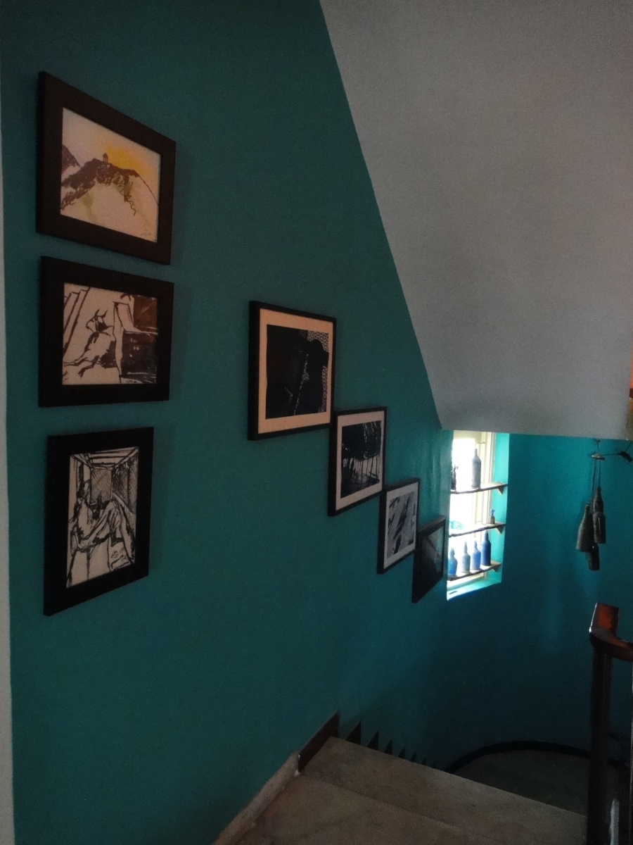 paintings and photographs