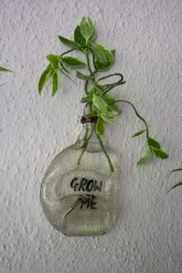 http://store.wonkyworks.in/Planter/Grow-Me-Planter-id-554952.html