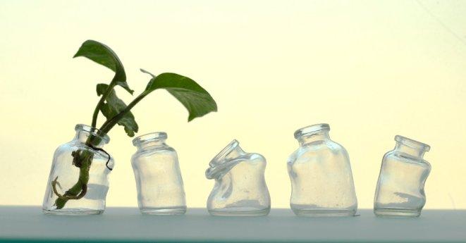 mini vases